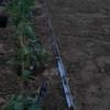 Kép 3/3 - GreenTech Horganyzott acél ágyásszegély