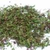 Kép 1/2 - Sedum sarj GreenTech